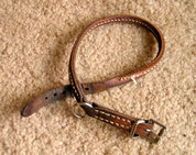 Leather buckle collar with traditional buckle.